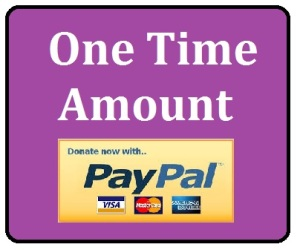 donate one time button
